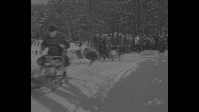 """snowbirds frolic"" / ""wonalancet, n.h."" superimposed over seated dog / vs dog team pulls away from small crowd of people in wintery scene / seated... - ミサ点の映像素材/bロール"