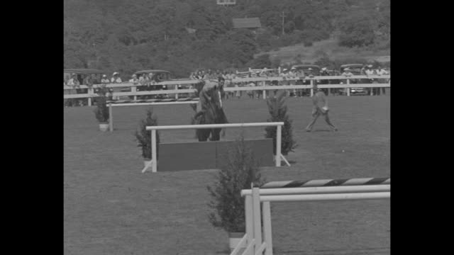 """""""society turns out for own horse meeting"""" / title: """"southampton, n. y. """" superimposed over young woman in riding togs atop a horse / constance... - foxhound stock videos & royalty-free footage"""