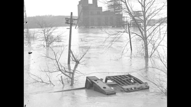 """special"" / title card: ""flood havoc"" / high angle debris floating down potomac river approaching bridge / potomac river"" sign next bridge with tree... - potomac river stock-videos und b-roll-filmmaterial"