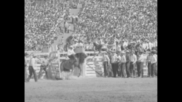 vídeos y material grabado en eventos de stock de sports / title the sheriffs' rodeo superimposed over crowds in stands / ms sheriff eugene biscailuz debbie reynolds and william boyd as hopalong... - william boyd