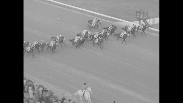 sports / title world's richest horse race superimposed over horses walking to post at garden state park racetrack for the garden state stakes / crowd... - starting gate stock videos and b-roll footage