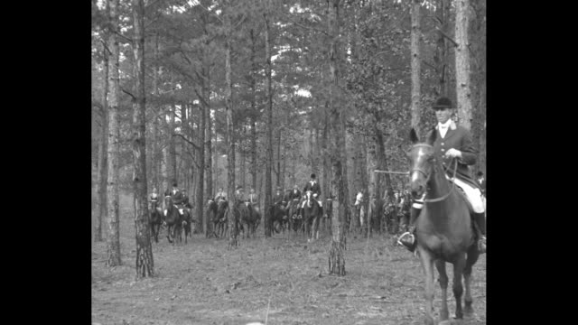 """""""sportsmen rally for big fox hunt, fort benning, ga - officers and ladies at infantry school ride to hounds in woodland chase"""" / men and women riding... - foxhound stock videos & royalty-free footage"""