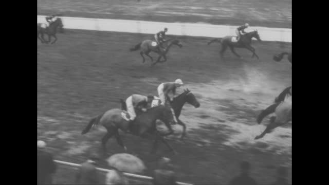 the grand national superimposed on horses parading onto track at aintree racecourse near liverpool / crowd stands in the rain some with umbrellas /... - hurdling horse racing stock videos and b-roll footage