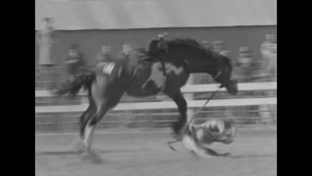 """""""they bite the dust! livermore, calif - it's a busman's holiday! cowboys take a day off and give a party for the local loco broncs and a dozen or so... - bucking stock videos & royalty-free footage"""