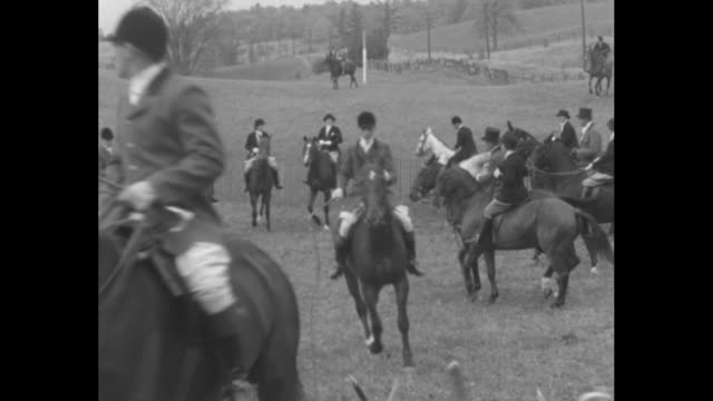 """""""toronto hunt club holds its annual meet! horsemen and hounds gather at king to enjoy ancient sport"""" / men on horses next to pack of dogs /... - hunting sport stock videos & royalty-free footage"""