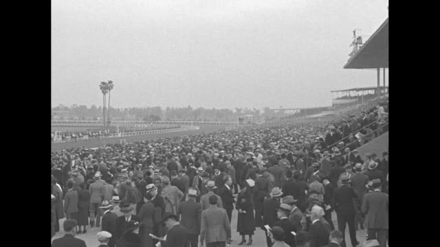 track opening in california draws 50000 / tiltdown horses in paddock at santa anita park in arcadia ca prior to start of race spectators look on /... - bugle stock videos and b-roll footage