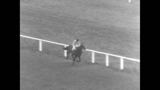 """""""turf"""" / vo marty glickman continues """"the year in sports,"""" featuring the 1956 grand national / 29 horses start the steeplechase race / a few horses... - documentary footage stock videos & royalty-free footage"""