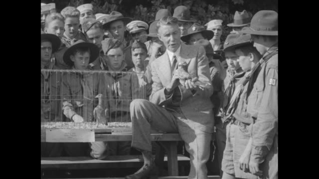 us army expert tells scout of war hero pigeons thomas ross shows noted birds at holmdel grape farm nj / ross speaks to boy scouts and sea scouts... - ross sea stock videos & royalty-free footage