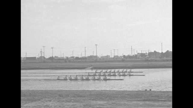 vídeos de stock e filmes b-roll de washington crew beats olympic mark in coast regatta / three rowing crews start race / three shots of rowing crews racing / spectator in bleachers... - universidade de washington