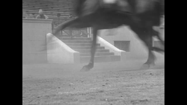 world's fair cavalry show a thriller / soldiers roman riding in arena / empty stands except two men horses' galloping legs in fg / soldiers roman... - chicago world's fair stock videos and b-roll footage