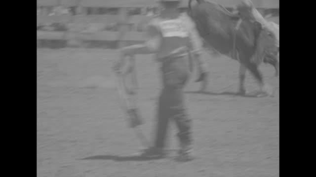 kids tame wild horses superimposed over boys riding horses at rodeo / ms 2 young female competitors in cowboy hats sitting looking at cam turn back... - bocksprång bildbanksvideor och videomaterial från bakom kulisserna