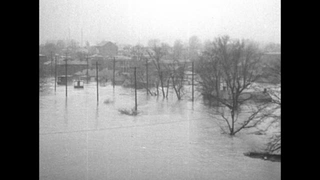 """vidéos et rushes de title """"louisville, ky"""" superimposed over flood water, trees, buildings in bg / houses half submerged / person rowing boat past building / truck... - rivière ohio"""