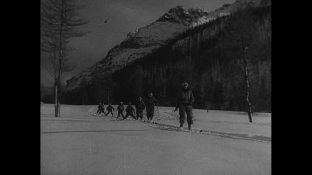 """""""mountain experts"""" superimposed on skis walking though snow / line of alpine chasseurs making way though snow with mountains beyond / st. bernard dog... - cartridge stock videos & royalty-free footage"""