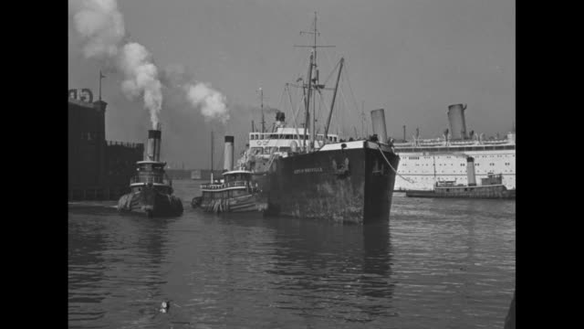 New York Harbor superimposed over cargo ship with two tugboats beside it / shot of stacks of cages with monkeys in them on deck of ship / cargo ship...