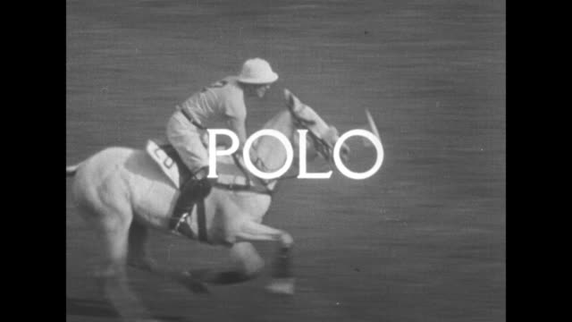polo superimposed over polo rider riding white horse as he executes a polo shot at the u s open polo championship / player gallops downfield hitting... - eastern usa stock videos and b-roll footage