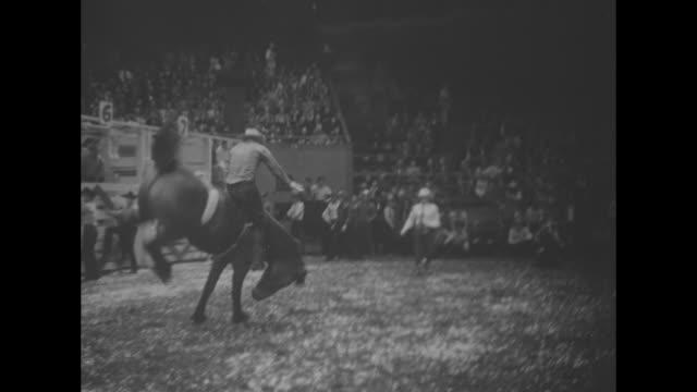 rodeo in new york superimposed over horses with riders moving in formation at rodeo in madison square garden / ls following horse dragging man... - bocksprång bildbanksvideor och videomaterial från bakom kulisserna