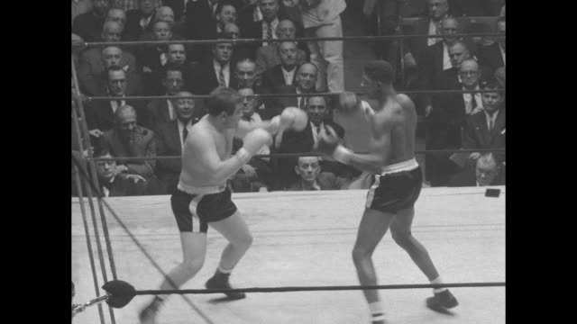 vídeos de stock, filmes e b-roll de title superimposed on boxers in ring the golden gloves / excited man coming out of seat applauding / vs men raining blows on each other view through... - luvas