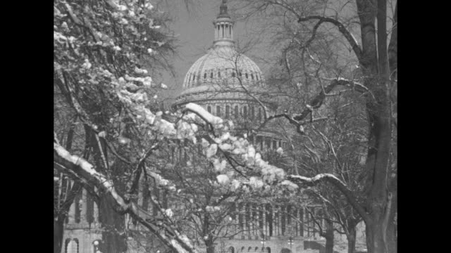 washington dc superimposed over shot of exterior of us capitol / two shots of capitol through tree branches with snow on them / shot of exterior of... - 1937 stock-videos und b-roll-filmmaterial