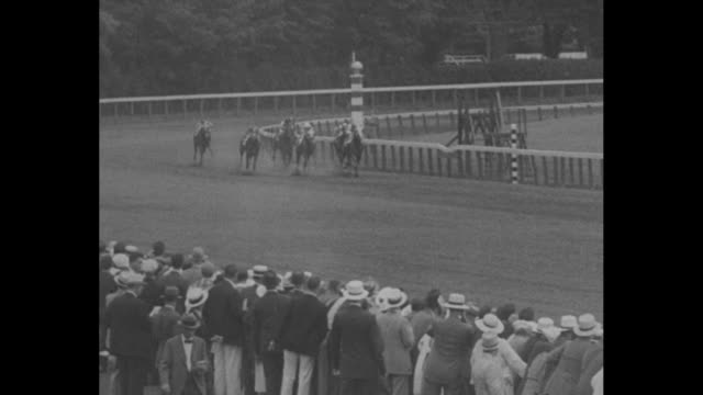"""title """"who won?"""" superimposed over race horses parading onto track / horses parading onto track / crowd in stands / horses start race and race along... - finishing stock videos & royalty-free footage"""