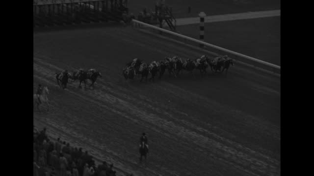 vídeos y material grabado en eventos de stock de title world's richest horse race superimposed on racetrack / packed grandstands / high angle view of several horses breaking out of starting gate /... - tan