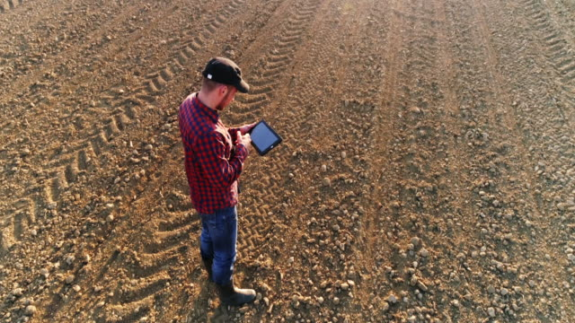 ms to ws aerial view farmer using digital tablet in sunny,vast,rural plowed field - zoom out stock videos & royalty-free footage