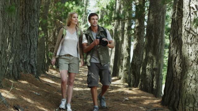 vídeos de stock, filmes e b-roll de ws to ms of couple walking along path in forest with camera - província do cabo oeste
