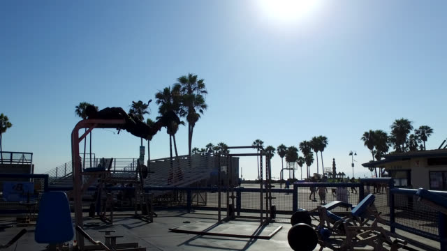 vidéos et rushes de to do bodybuilding in venice beach against day - body building
