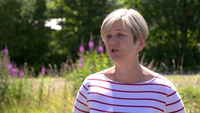to look at whether criminal offences have been committed at maternity units; england: ext lilian greenwood mp interview sot - i've already written to... - babies only stock videos & royalty-free footage