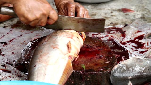 Zur Zubereitung von Fisch zum Kochen