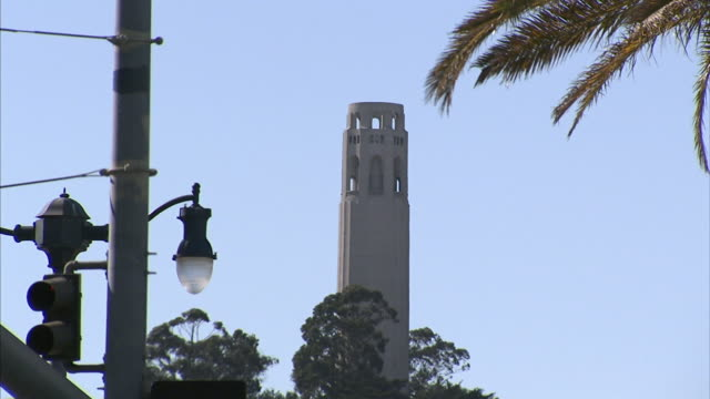 to street lamps & palm tree fg, coit tower in distant bg . ca - コイトタワー点の映像素材/bロール