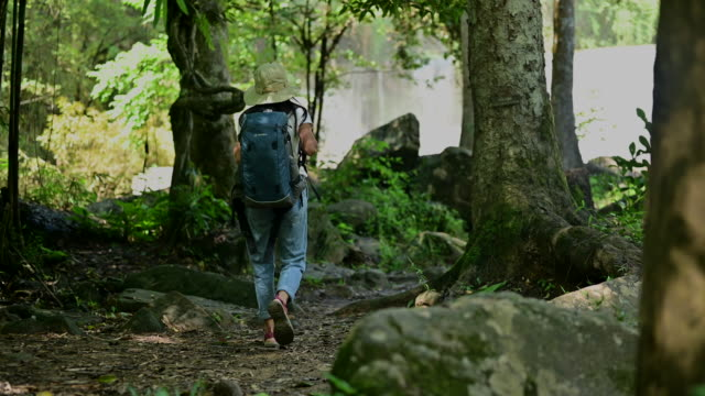 to the nature falls - rucksack stock videos & royalty-free footage