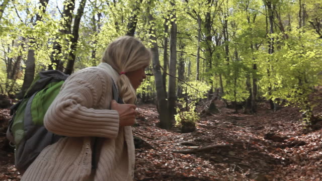 stockvideo's en b-roll-footage met pan to woman walking in newly green forest - alleen één oudere vrouw