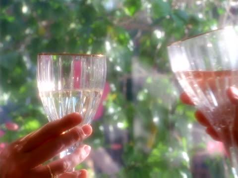 vídeos de stock, filmes e b-roll de a toast in crystal - unknown gender