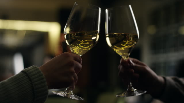 toast with white wine - white wine stock videos & royalty-free footage