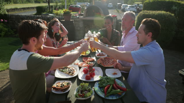 toasting to friendship - dining stock videos & royalty-free footage