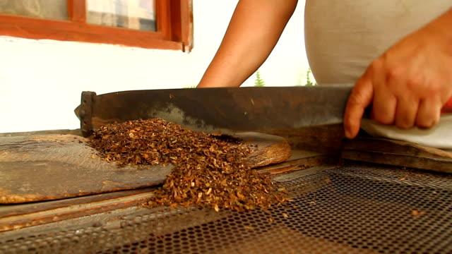 Tobacco prepared by elders in 'Valle de la Eterna Juventud'