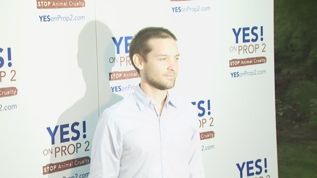tobey maguire at the ellen degeneres and portia de rossi host yes on prop 2 party at los angeles ca - ellen degeneres stock videos and b-roll footage