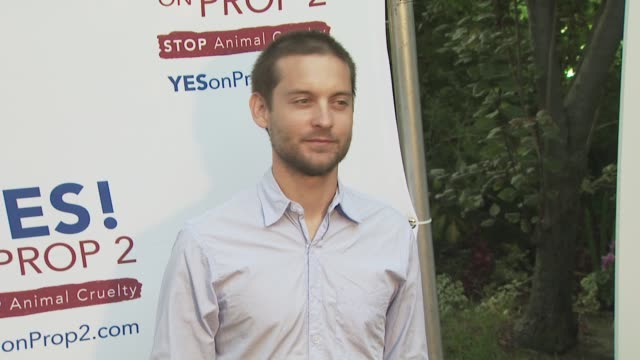 tobey maguire at the ellen degeneres and portia de rossi host yes on prop 2 party at los angeles ca - tobey maguire stock videos and b-roll footage