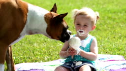 Toddler and doggie share Ice cream