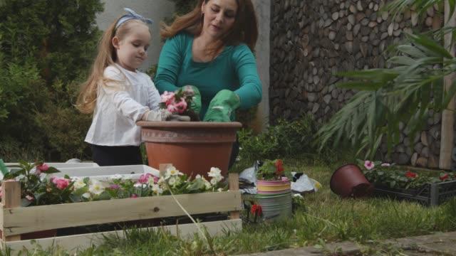 vidéos et rushes de enfant en bas âge aidant sa mère dans la mise en pot des fleurs ensemble - gant de jardinage