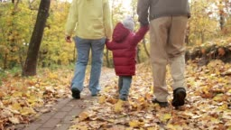 Toddler boy walking with grandparents in autumn
