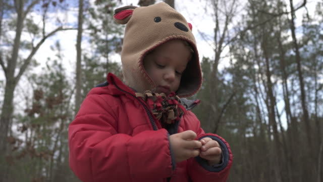 toddler exploring acorn seed - jacket stock videos & royalty-free footage