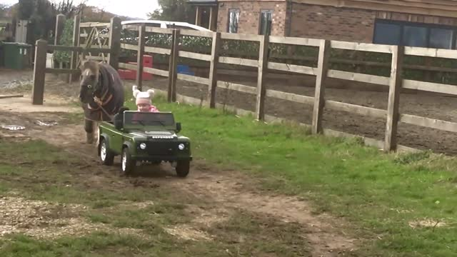 toddler from shropshire has proved you're never too young to help in a stable yard, leading a pony out to pasture in her miniature off-road vehicle.... - pasture stock videos & royalty-free footage