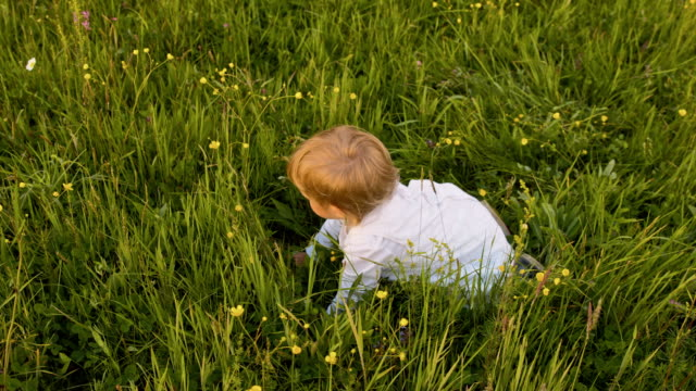 slo mo toddler girl crawling in the grass - crawling stock videos & royalty-free footage