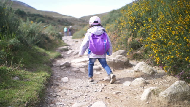 vídeos de stock e filmes b-roll de toddler girl hiking in countryside,northern ireland - mochila saco