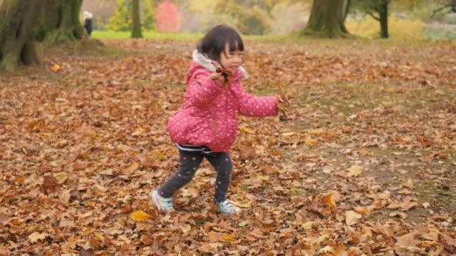 冬の森林公園で遊ぶ幼児の女の子,北アイルランド - 2歳から3歳点の映像素材/bロール