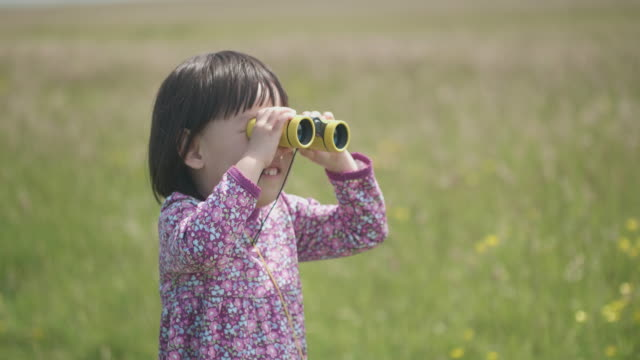 toddler girl playing in summer countryside,northern ireland - childhood stock videos & royalty-free footage
