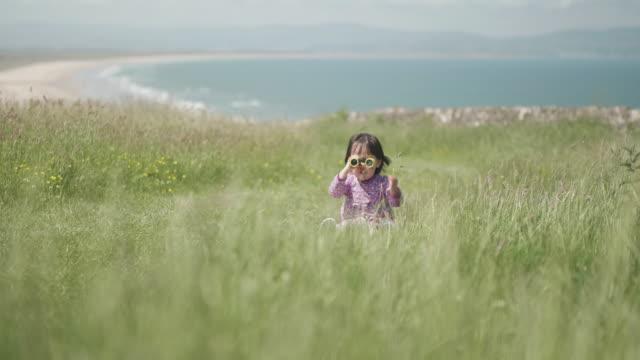 夏の田舎で遊ぶ幼児の女の子、北アイルランド - childhood点の映像素材/bロール
