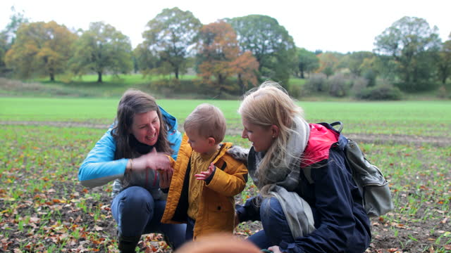 toddler playing in the park with his mums' and dog - mammal stock videos & royalty-free footage