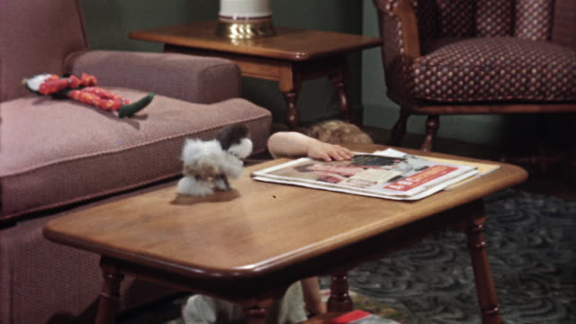 1955 montage ms td toddler playing with magazines on living room coffee table/ ms toddler playing with stuffed toy on couch/ usa - coffee table stock videos & royalty-free footage